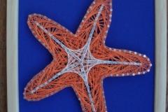Morska zvijezda